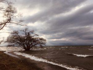 3月の琵琶湖畔キャンプはまたもや暴風!冬キャンプは酒で暖をとる?笑