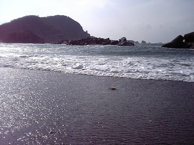 20060316~神島 (15)