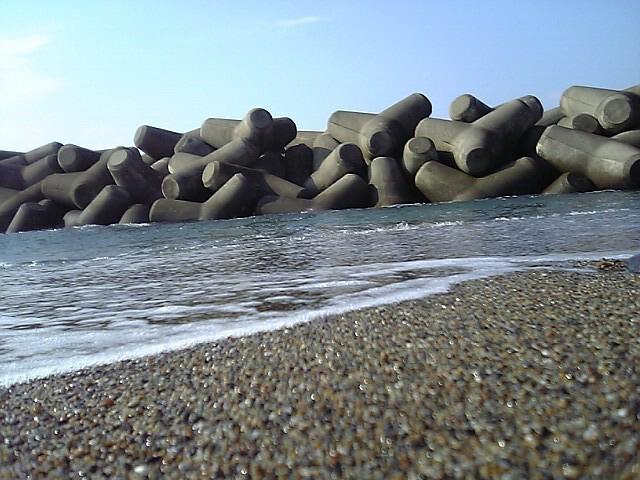 20060316~神島 (16)
