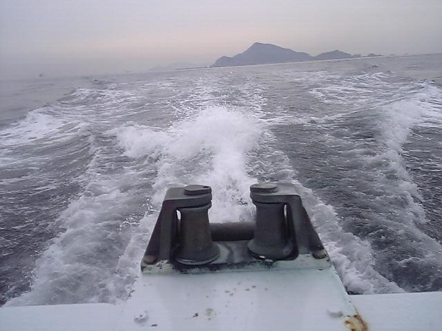 20060316~神島 (19)