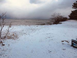 湖岸緑地吉川の北側